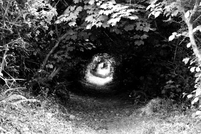 Spiral path 2.jpg